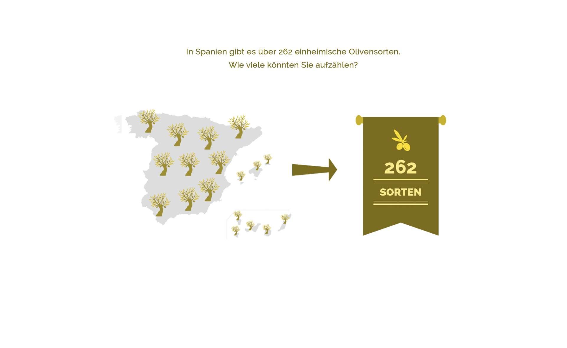 262 Sortenvon Oliven sind inSpanien angebaut