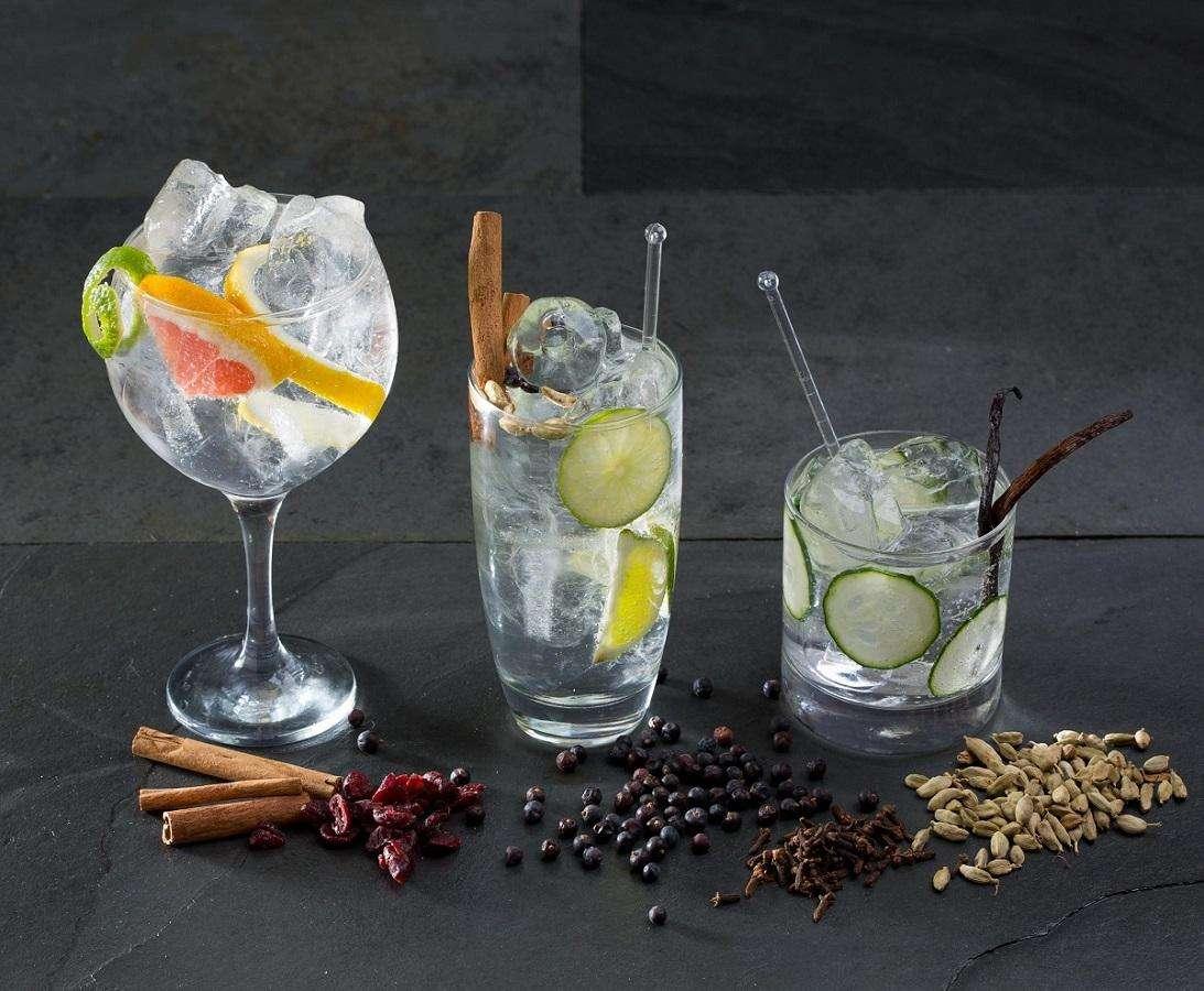 Gin Tonic mit Olivenölen aus Spanien