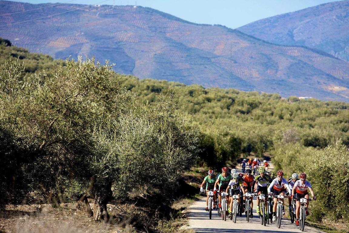 Radsport-Team Olivenöle aus Spanien