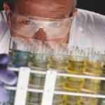 Auswirkungen der Einnahme von Nativem Olivenöl Extra auf Schwangerschaftsdiabetes