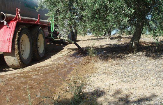 Kontrolle von flüssigen Rückständen aus Ölmühlen durch die Verwendung auf Olivenfarmen